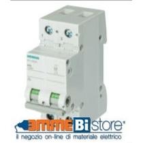 Interruttore Sezionatore 32A 2 Poli 2 Moduli Leva Grigia Siemens 5TL12320