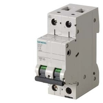 Interruttore Automatico Magnetotermico 2 Poli 2 Moduli 10A 10kA  Siemens 5SL42107