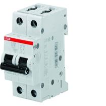 Interruttore Automatico 25A 4,5kA 2 Poli ABB S598507