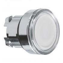 Pulsante illuminabile Bianco foro 22 Schneider ZB4BW313