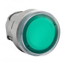 Pulsante illuminabile Verde...