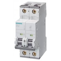 Interruttore Automatico Magnetotermico 2P 2 Moduli 6A 4,5kA  Siemens 5SY32067