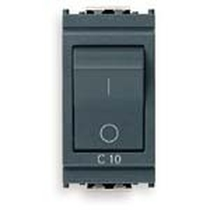 Interruttore MT 1P+N C10 120-230V grigio Vimar Idea 16505.10