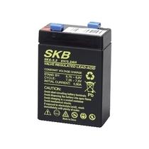 Batteria al Piombo Ricaricabile 6V 3,2 Ah SKB 38620307