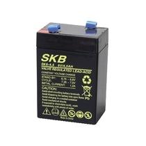 Batteria al Piombo Ricaricabile 6V 4.5Ah SKB 38620405